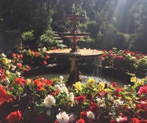 flowers, fountain, and garden image