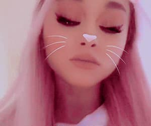 gif, ariana grande theme, and hot pink image