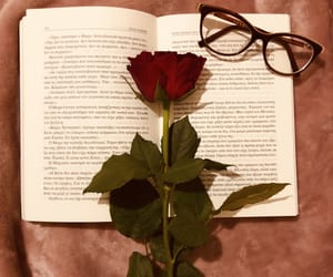 books, cozy, and glasses image