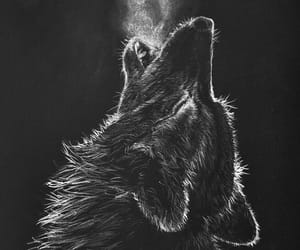 animal, artistic, and Howl image