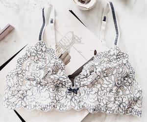 bra and fashion image