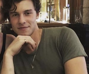 shawn mendes and celebrity image