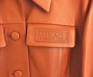 fashion and Versace image