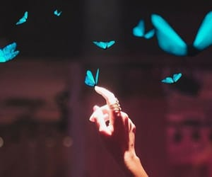 beautiful, butterfly, and hands image