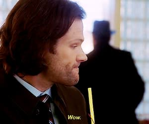gif, supernatural, and spnfamily image