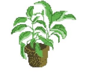 plant, transparent, and pixel image