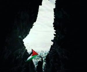 arabs, palestine, and photography image