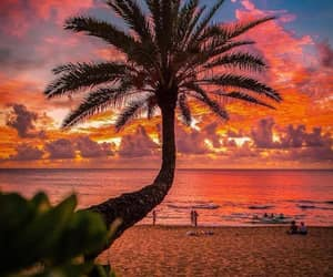 beach, hawaii, and ocean image