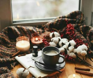 blanket, cup, and morning image