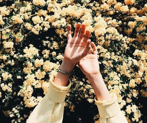yellow, flowers, and hands image