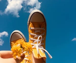 yellow, flowers, and sky image