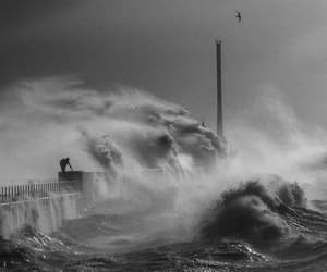 nature, sea, and jean gaumy image