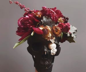 crystal, flower, and skull image