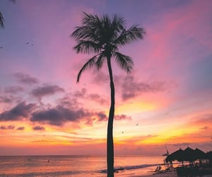 beach, colorful, and palm trees image