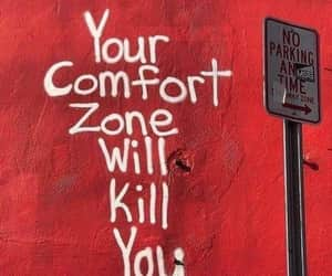 comfort zone, kill, and quotation image