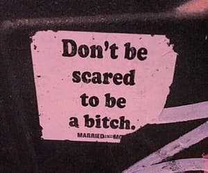 bitch, pink, and quotes image