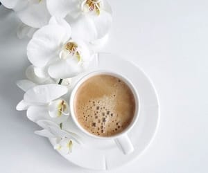 coffee, flowers, and white image
