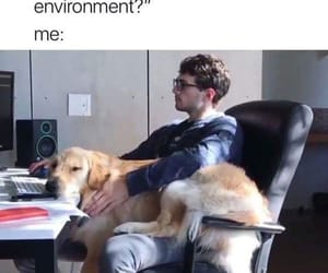 cuddle, dog, and work image