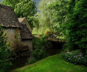 garden, nature, and england image
