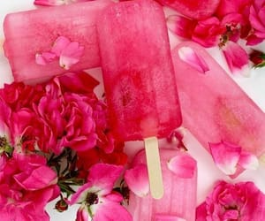 pink, flowers, and summer image
