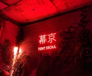 aesthetic, korean, and neon image