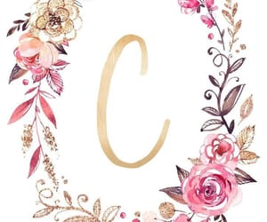c and wallpapers image