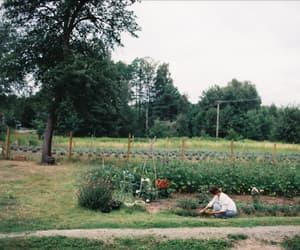 garden, farm, and vintage image
