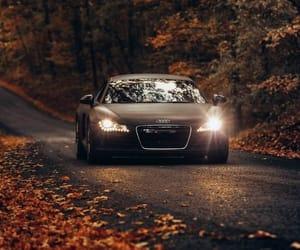 audi, car, and fall image