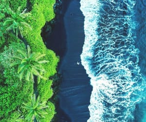 beach, hawaii, and nature image
