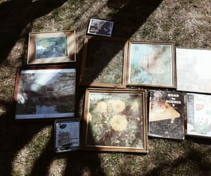 art, natural, and nature image
