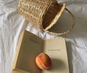 peach, book, and picnic basket image