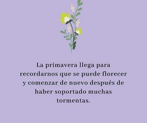 frases, primavera, and quotes image