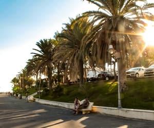 coast, italy, and palm trees image