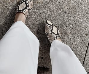 fashion, shoes, and snake print image