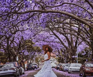 beautiful, flowers, and modern image