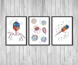 bacteria, bacteriophage, and decor image
