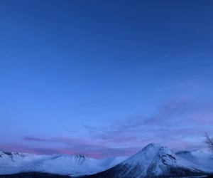 blue, frosty, and pink image