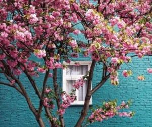 flowers, season, and spring image