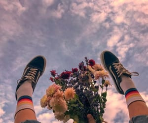 flowers, sky, and vans image