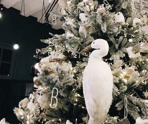 christmas, france, and christmastree image
