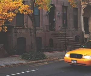autumn, aesthetic, and yellow image
