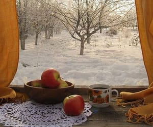 snow, winter, and apple image