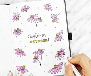 drawings, flowers, and bullet journal image