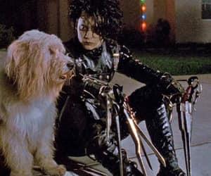 edward scissorhands, johnny depp, and dog image