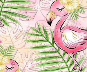 fashion, flamingos, and kawaii image