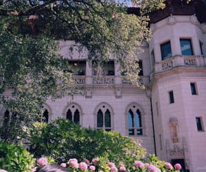 pink, castle, and flowers image