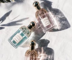 bright, perfume, and fragrances image