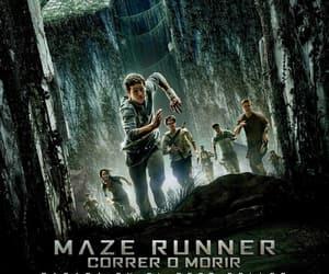 KAYA SCODELARIO, maze runner, and thomas brodie-sangster image