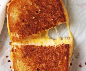 "savorytoothgirl:"" FANCY SCHMANCY GRILLED CHEESE"""