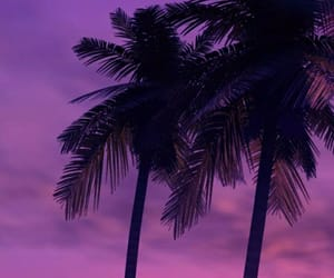 beach, place, and purple image